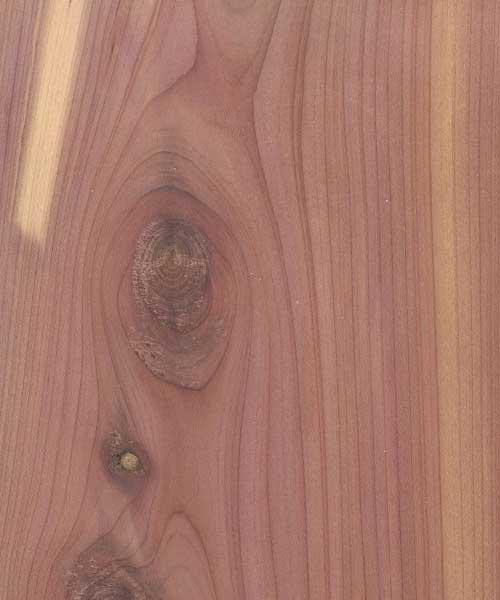 Aromatic cedar plywood cherokee wood products