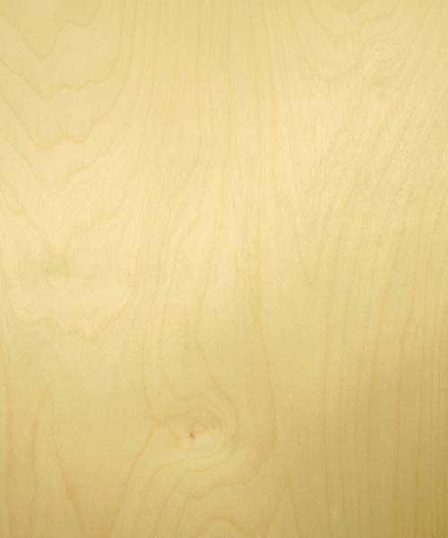 Prefinished White Birch Plywood